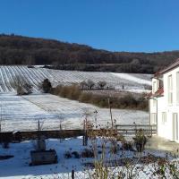 Aux vignes, hôtel à Wissembourg