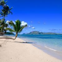 Coconut Beach Resort, hotel in Tavewa