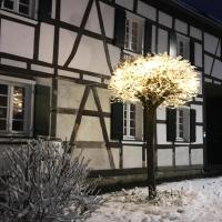 Kleine Fachwerkoase, Hotel in Alfter