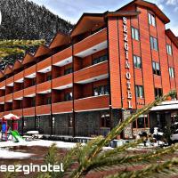 Sezgin Hotel, отель в городе Узунгёль