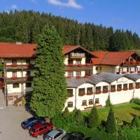 Waldhotel Seebachschleife, hotel in Bayerisch Eisenstein