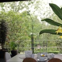 BEAUTIFUL APARTMENT IN POLANCO WITH PARK VIEW