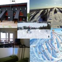 SKIVILLAS 61 UKKOHALLA, hotel in Hyrynsalmi