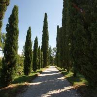 Villa Ghislanzoni, hotell i Vicenza