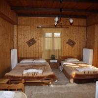 Athamania Artas, hotel in Athamanio
