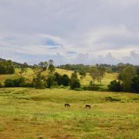 Country Breeze Farm Stay, hotel in Kandanga