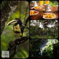 El Edén: Treehouse, hotel em Mindo