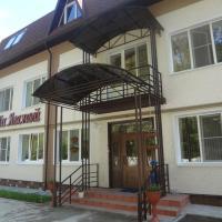 Гостевой дом на Лесной, отель в Мышкине