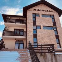 Pensiunea Magnolia, hotel din Craiova