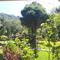 Hotel y Bungalows ecologicos Marcelo