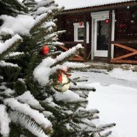 Stavne 158, отель в городе Stavnoye