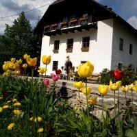 Ferienhof Rotbuchner, Hotel in Vorderstoder