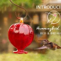 Hummingbird Haven B&B, hotel em Ladysmith