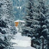 Resort Skrivena, hotel u gradu Berane