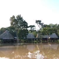 Amazon Dreams Eco Tours