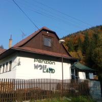 Penzión Wolfland - Javorníky, hotel in Horná Mariková
