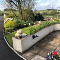 June's b&b, hotel near Ireland West Airport Knock - NOC, Kilkelly