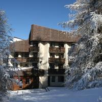Hôtel Les Trappeurs, hotel in Les Orres