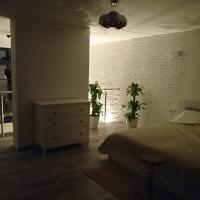 Apartament Loft 100 m2 Centrum Bydgoszcz, hotel near Bydgoszcz Ignacy Jan Paderewski Airport - BZG, Bydgoszcz