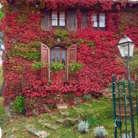 Villa del lago, hotel in Barberino di Mugello