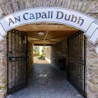 An Capall Dubh B&B Dingle, hotel in Dingle