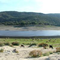 Gite à la ferme du lac Afourgaa, hôtel à Séfrou