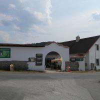 Restaurace a penzion U Lva, hotel in Karlštejn