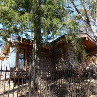 Уютный деревянный Эко-дом, отель в Токсове