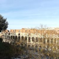 Colosseum Music Design