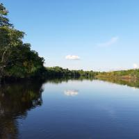 lupuna jungle tours and expeditions, hotel in Iquitos