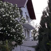 Vila Hubertus, hotel in Curtea de Argeş