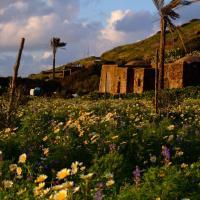 Domus Sicily - Dammuso dei Conigli, hotel near Pantelleria Airport - PNL, Pantelleria