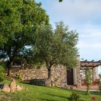 Villa Serra d'Elci, hotell i Ascea