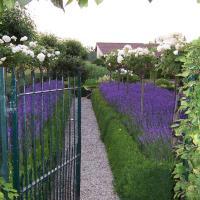 Gardenhouse Boerke Naas With Kitchen