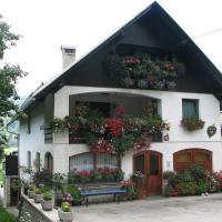 2 studio & apartment Cvetek Bohinj