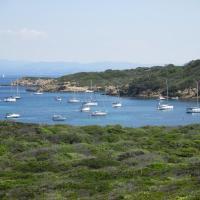 Studio Hyeres Port - Piscine