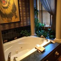 Renaissance Riverboat Suites and Rooms, hotel in Galena
