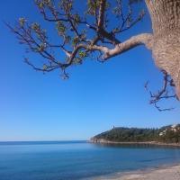 Un po di relax a pochi passi dal mare!