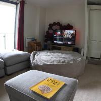 Luxurious comfortable flat near Hydro & town