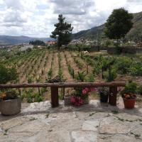 Casa da Vinha em Tabuaço - Douro