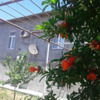 Rental house in village Bine