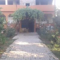 Köy gölkenari ev