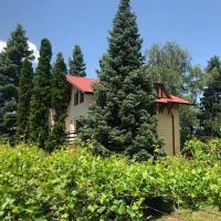Къща за гости Рилски барс, хотел в Сапарева баня