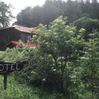 HÔTEL RESTAURANT LA FOURMI、Bourbach-le-Hautのホテル