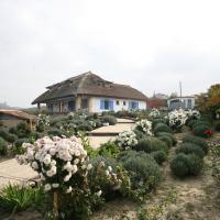 Safari Danube Delta, hotel in Enisala