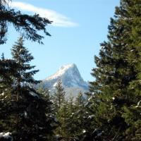 Valhalla Pines Campground, hotel em Vallican