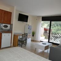 Genciana-Vacances Pirinenca