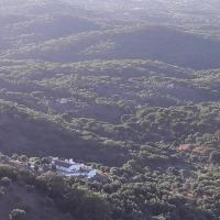 Olive Tree Cottage - Quinta de Evoramonte