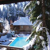 Alta Crystal Resort at Mt Rainier