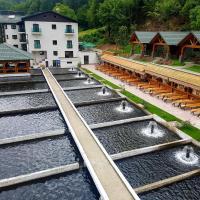 Lostrita - Pastravrie, Hotel & SPA, hotel din Valea Neagră